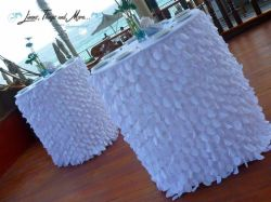 Wedding turquoise set-up the hotel del Arco in Cabo