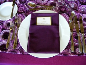 Eggplant Napkins Cabo Wedding