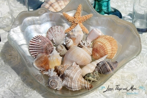 Extra sheashells decor for rehearsal dinner at the Cabo Azul resort