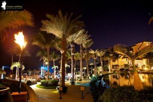 Wedding Location: Cabo Azul Resort