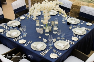 Navy Blue and silver decor for Esperanza resort wedding