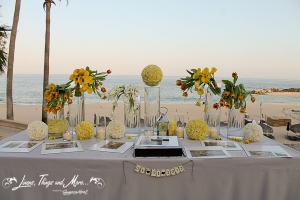 Wedding guest book and entrance table - Hilton Cabo