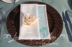Napkins, linens, chargers, chairs, tables rentals and design Los Cabos