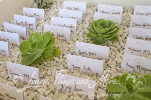 Succulents place card design by Linens, Things and more... Barcelo Los Cabos